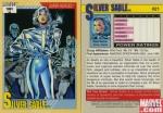 detail (21) silver sable